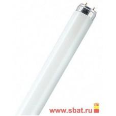 158102 L36Вт/765 G13 25шт/уп (Cмоленск)-лампа люминисцентная дневного света OSRAM